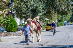 Man with the camel, Uzbekistan Royalty Free Stock Photos