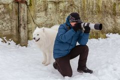 A man with a camera takes pictures of dogs. Gomel, Belarus. Gomel, Belarus - January 15, 2017: Photographer with a dog Samoyed Laika in the winter stock photography
