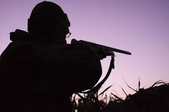 Silhouette of a hunter with a gun at sunrise on a lake overgrown with reeds. stock image