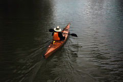 Man canoing on the lake Stock Images