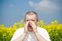 Man on canola field. Man sneezes on canola field stock photos