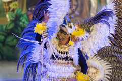 Man in carnival costume Royalty Free Stock Image