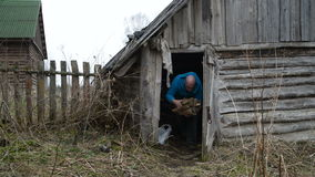 Man carries out of the old barn firewood Royalty Free Stock Photography