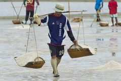 Man carries salt at the salt farm in Huahin, Thailand. Royalty Free Stock Images