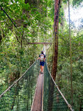Man carrying a baby on the canopy walkway Royalty Free Stock Image