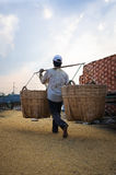 Man carrying a basket of rice husk, brick kiln factory Stock Photo