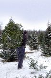 Man Carrying Christmas Tree on Snowy Day Stock Photography