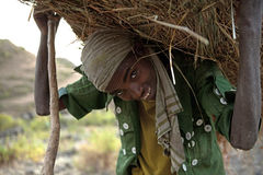 Man carrying a hay bundle, Ethiopia Royalty Free Stock Photo