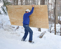 Man carrying plywood through snow. Man carrying a sheet of plywood through snow royalty free stock photography