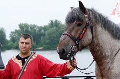 Man with carthorse preparing to performance during Day of Kiev holiday Royalty Free Stock Images