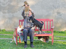 Man with cat and dogs. Old man keeps the cat from dogs Stock Photography