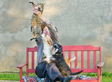 Man with cat and dogs. Old man keeps the cat from dogs Royalty Free Stock Images