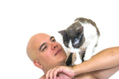 A man with a cat on his shoulders. A man with a cat on his shoulders with a white background Stock Images