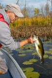 Man Fishing Holding Largemouth Bass Stock Photography