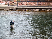 Man catching fish. Man is catching a fish in colordo Stock Photography