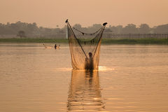 A man catching fish by net in Mandalay, Myanmar Royalty Free Stock Image