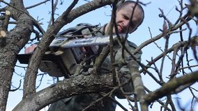 Pruning Trees and shrubs. A man with a chainsaw cuts the tree branches. The season of spring works. HD quality stock video footage