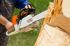 Man with chainsaw. Cutting the tree stock photos