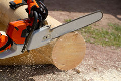Man with chainsaw. Cutting the tree Royalty Free Stock Photo