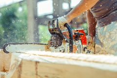 Worker sawing a chainsaw tree. Man with a chainsaw cutting a tree for construction royalty free stock image