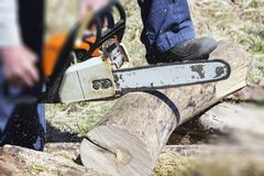 A man with a chainsaw cutting wood. The concept of protection of nature. Firewood royalty free stock photography