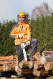 A man with a chainsaw Royalty Free Stock Images