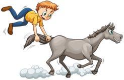 Man chasing the horse Stock Photos