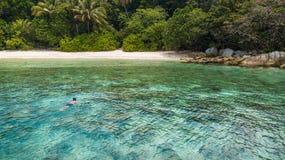 Man che si immerge in un mare tropicale vicino alla spiaggia sabbiosa e nella giungla nell'isola di Perhentian Le feste viaggiano fotografie stock