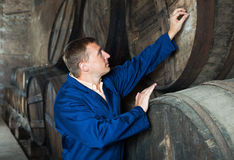 Man checking ageing barrel process Stock Images