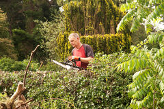 Man checking chainsaw Royalty Free Stock Images