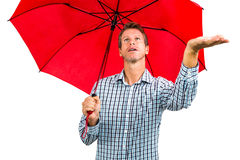 Man checking weather while holding red umbrella Royalty Free Stock Photo