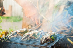 Man checks the fish on the grill for readiness Stock Photography