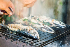 Man checks the fish on the grill for readiness Stock Image