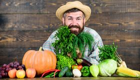 Man chef with rich autumn crop. bearded mature farmer. seasonal vitamin food. Useful fruit and vegetable. organic and. Natural food. happy halloween. harvest royalty free stock image