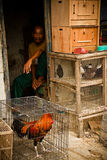 Man and chicken of the bird markets of Malang, Indonesia Royalty Free Stock Image