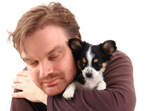 Man and chihuahua Stock Photos