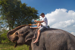 Man and child riding on the back of elephant, feeding it with fruit Stock Image