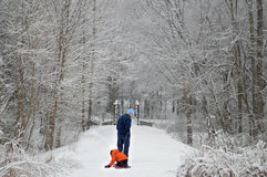 Man and child in snowy park. Rear view of man and young son walking on snow covered pathway between trees in winter park Royalty Free Stock Image