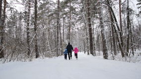 Man and children hold hands and run in the winter forest. Slow motion. Man and two his children hold hands and run in the winter forest. Slow motion stock video