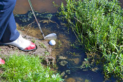 Man chipping ball from water hazard royalty free stock image