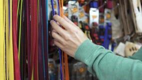 Man choose leash for dog in pet shop