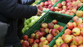 Man chooses apples in the supermarket. Man buyer chooses apples in the supermarket stock footage
