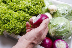 Man choosing onion from box of fresh vegetables Stock Photography
