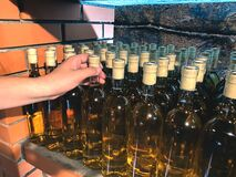 Free Man Choosing White Wine Bottle At Local Winery - Traditional Homemade Wine Or Alcohol Fruit Drinks In Local Wine Store. Wine Royalty Free Stock Image - 196562996