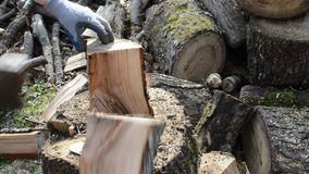 Man chop wood with axe. closeup of wood chopping stock video