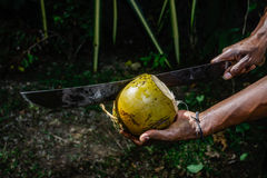 Man chopping a coconut Royalty Free Stock Photo