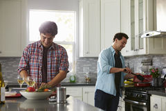 Man chopping while his boyfriend cooks ingredients in a pan Royalty Free Stock Photography