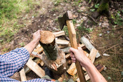Man chopping wood in the forest. Man chopping wood in the forest with an ax Stock Images