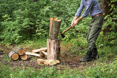 Man chopping wood in the forest. Man chopping wood in the forest with an ax Stock Photos