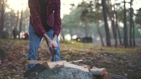 Man chops wood with axe in the forest. Forester cuts wood. Wood chopping. Slow motion.